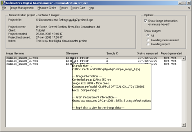 Screenshot of the main program window